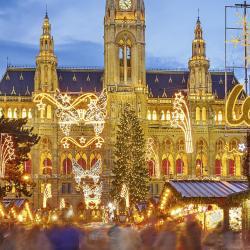 Vídeňské vánoční trhy, Vídeň