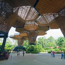 Medellin's Botanical Garden
