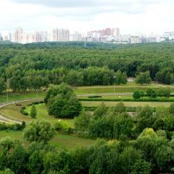 Bitsa Park