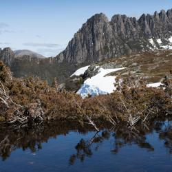 Góra Cradle, Cradle Mountain