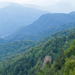 Caucasian State Nature Biosphere Reserve