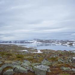 planota Hardangervidda, Kinsarvik