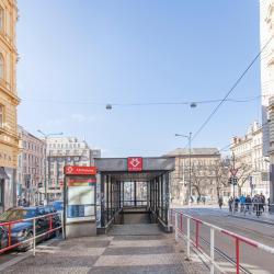 I.P.Pavlova Metro Station