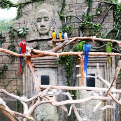 Minsk Zoo, Minsk