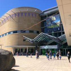 Te Papa, Wellington