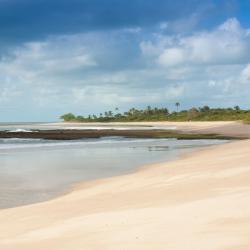 חוף נטיבוס
