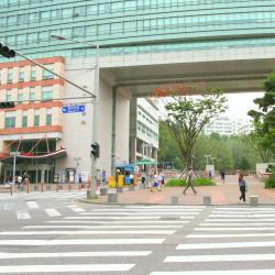 Hongik University