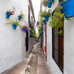 La Juderia de Córdoba