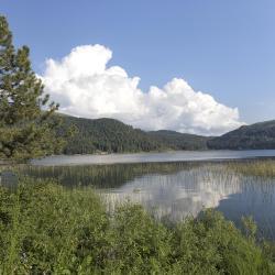 Lake Abant, Abant