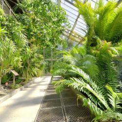 Jardin botanique royal de Madrid