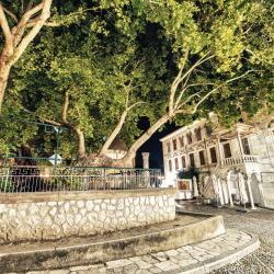 Дерево Гиппократа