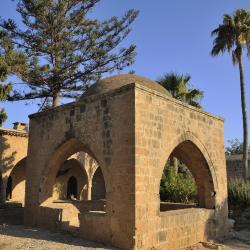Biara Agia Napa