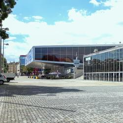 Стадион «Винер Штадтхалле»