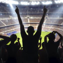 Geoffroy-Guichard Stadium