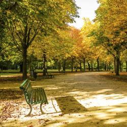Großer Tiergarten Park