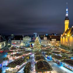 Mercatino di Natale Tallinn, Tallinn
