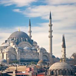 Suleimanijos mečetė