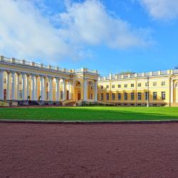 Александровский Дворец, Пушкин