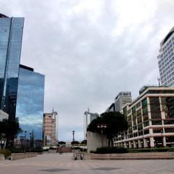 中心商業區(Centro Direzionale)