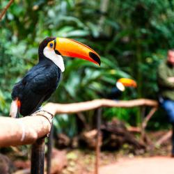 Entrada al Parque Nacional Iguazú