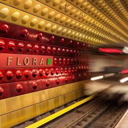Flora stanice metra