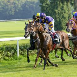Hoppegarten Horse Racing