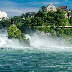 Rheinfall-fossinn, Dachsen