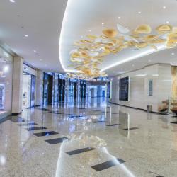 Etihad Travel Mall, ดูไบ