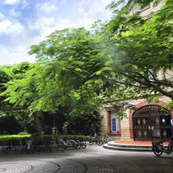 אוניברסיטת שיאמן