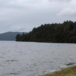 Lake Rotoiti, Ngongotaha