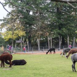 ヴィルヘルマ動物園