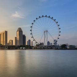 Singapur Flyer, Singapur