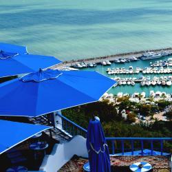 Provincia di Tunisi