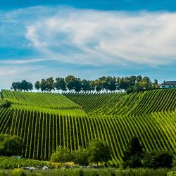 Luxembourg Mosel 5 holiday rentals