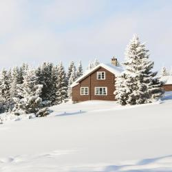 Lillehammer 5 serviced apartments