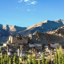 Leh Ladakh 4 self catering properties