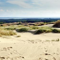 Curonian Spit 18 vacation homes