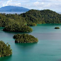 Oeste de Papúa