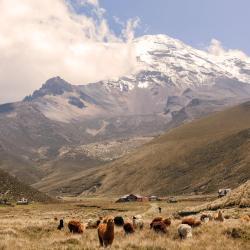 Chimborazo Province 4 luxury hotels