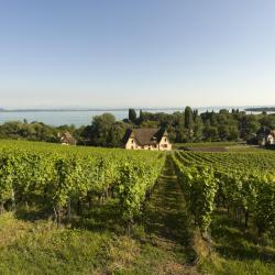 Lake Neuchatel 8 villas