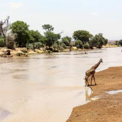 Isiolo 4 Glamping Sites