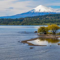 Villarrica Lake 4 country houses