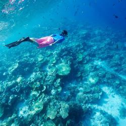 Southern Atolls 36 resorts
