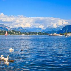 Lake Lucerne 62 accessible hotels