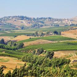 Golan Heights 21 villas