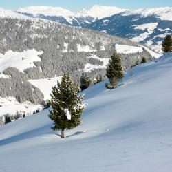 Zillertal 4 boutique hotels