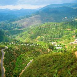 Badulla District 375 homestays