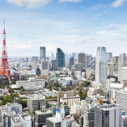 Préfecture de Tokyo 33 hôtels à bas prix
