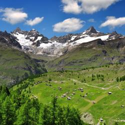 Swiss Alps 14 Glamping Sites