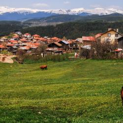 Rhodope Mountains 385 budget hotels